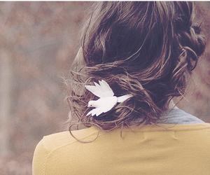 hair, girl, and bird image