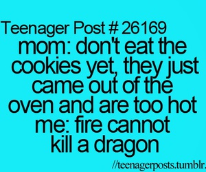 funny, teenager post, and dragon image