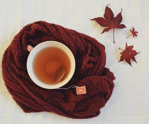autumn, colors, and cup image