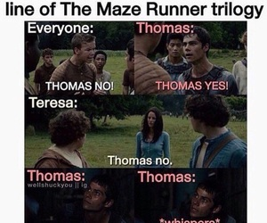 funny and the maze runner image