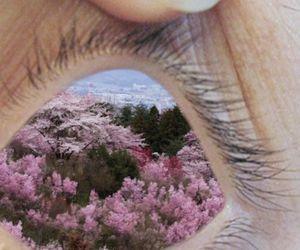 eye, eyes, and flowers image