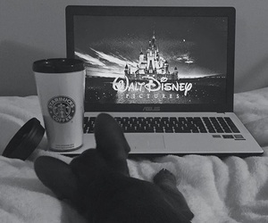 puppy, starbucks, and asus image