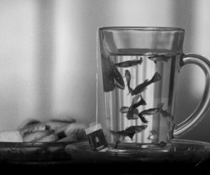 fish, tea, and black and white image