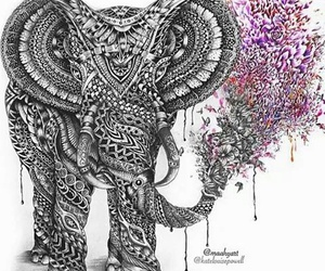 drawing and elephant image