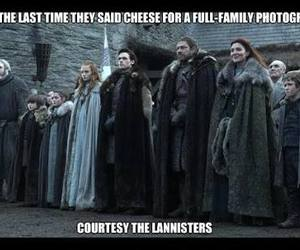 funny, meme, and stark image