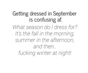 dress, funny quote, and quote image