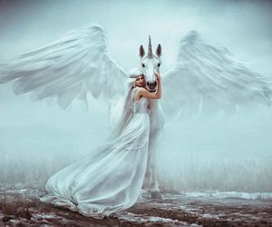 white and unicorn image
