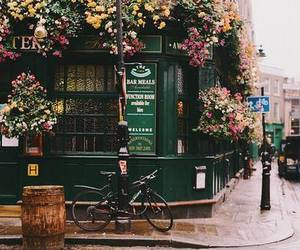 flowers, vintage, and city image