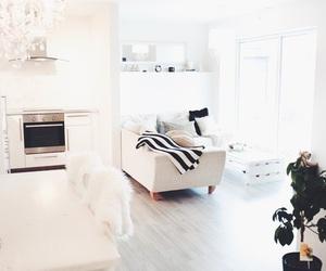 interior, room, and beautiful image