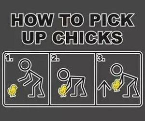 funny, Chick, and lol image