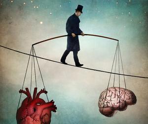 heart, brain, and balance image