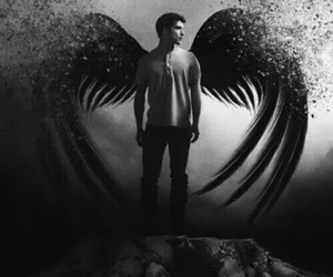 angel, black and white, and guy image