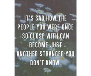 strangers, quote, and sad image