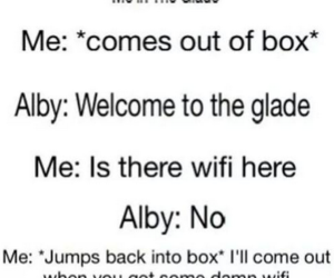 wifi, alby, and the maze runner image