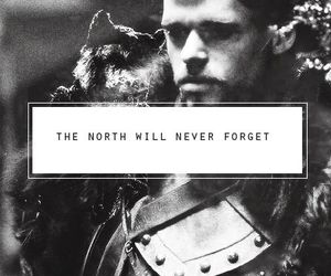 game of thrones, robb stark, and house stark image