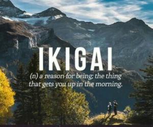 japanese, ikigai, and words image