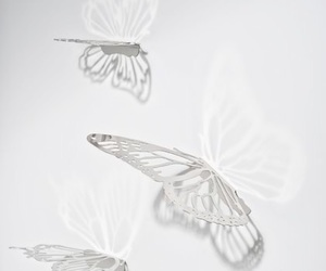 butterflies, grunge, and pale image