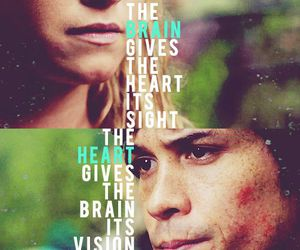 the 100, bellamy, and clarke griffin image