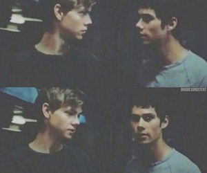 don, newt, and the maze runner image