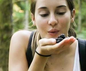 Shailene Woodley, divergent, and shai image