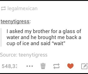brother, water, and funny image