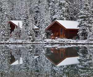 cabin, cottage, and cozy image