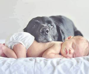 baby, protect, and cute image