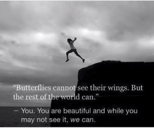 beautiful, butterflies, and we image