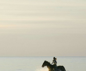 horse, sky, and water image