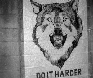 quote, wolf, and hard image