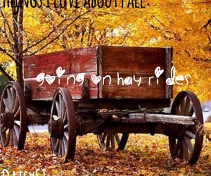 hay ride, autumn, and fall image