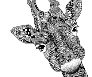 giraffe, art, and animal image