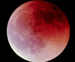 moon, pink, and red image
