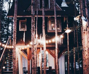evening, forest, and haus image