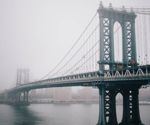 bridge, city, and water image