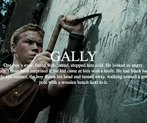 gally and maze runner image