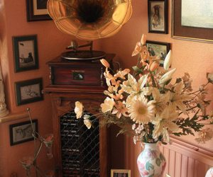 flowers, grammophone, and room image