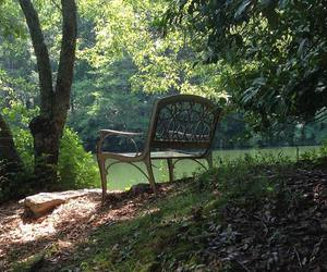art, bench, and nature image