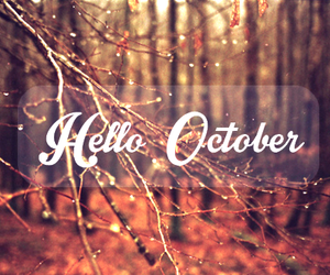 autumn, fall, and awesome image