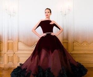 fashion, dress, and stephane rolland image