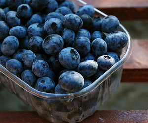 blueberry, fruit, and berries image