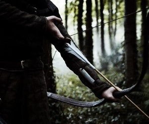 arrow, forest, and bow image