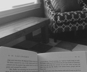 book, reading, and chair image
