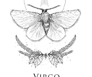virgo, horoscope, and zodiac image