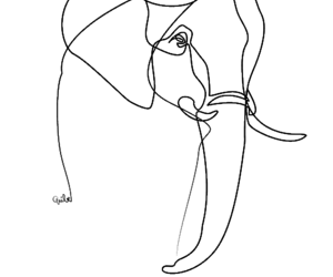 elephant, outline, and seethrough image