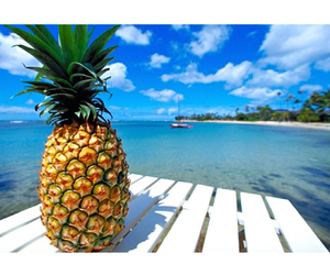 beach, pineapple, and sea image