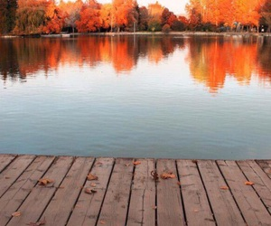 autumn, orange, and lake image