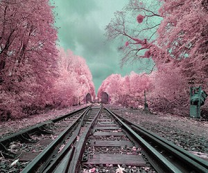 belive, train, and pink image