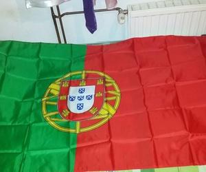 flag, obrigado, and lol image