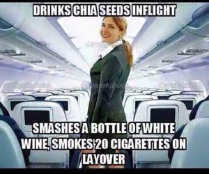 airplane, flight attendant, and healthy life image